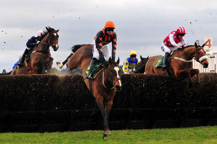 Grand National horse racing jumps