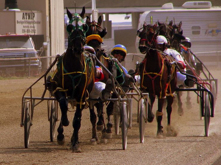 Harness racing in the US