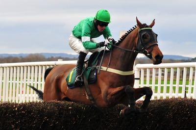 Horse on jockey