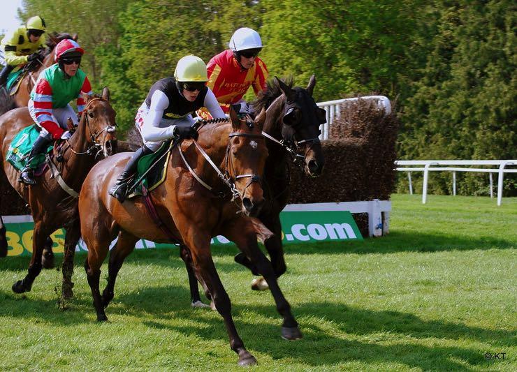 Horse racing over a hurdle