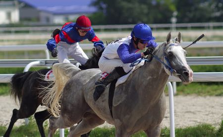 Horse racing head to head