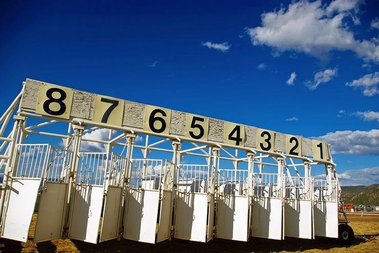 Horse racing starting gate