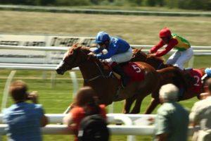 Huntingdon Racecourse action shot