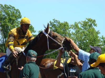 Maiden horse race