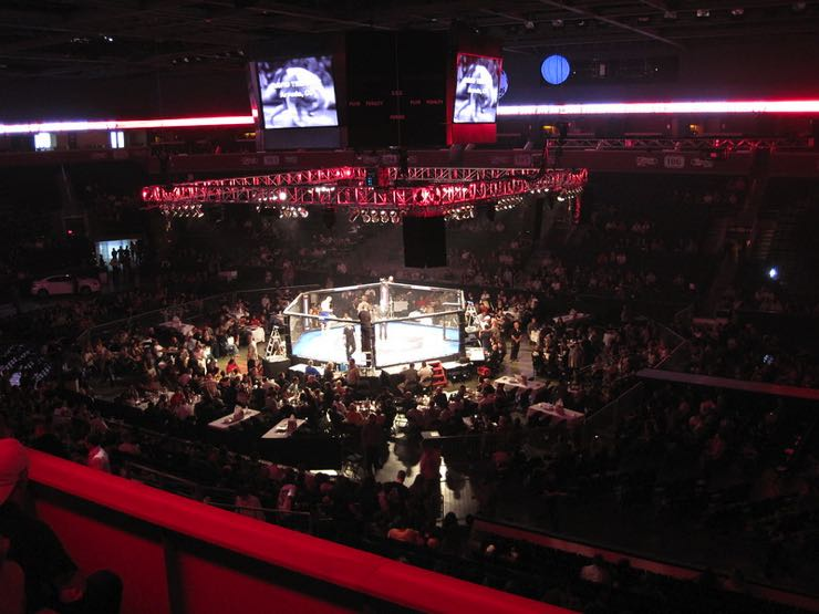 MMA fighting crowd
