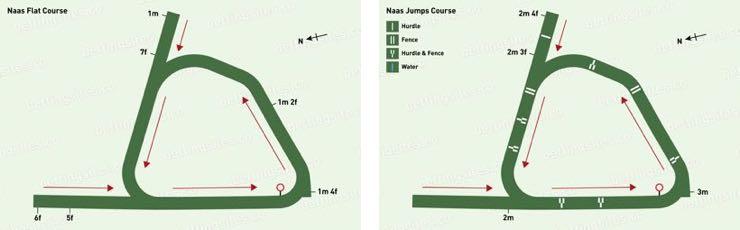 Naas Flat & Jumps Racecourse Maps