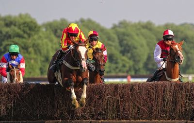 National Hunt jockeys & horses