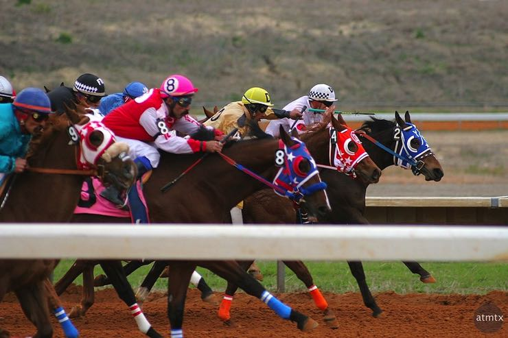 Neck & neck horse race
