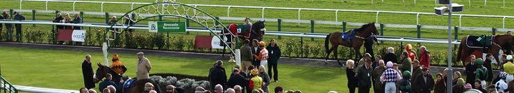 Newcastle Racecourse panoramic