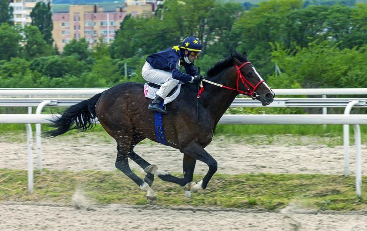Single race horse and jockey